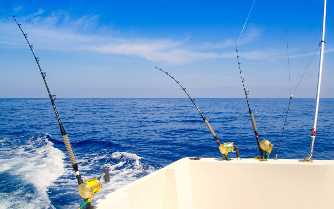 What to know about fishing. Basic notions